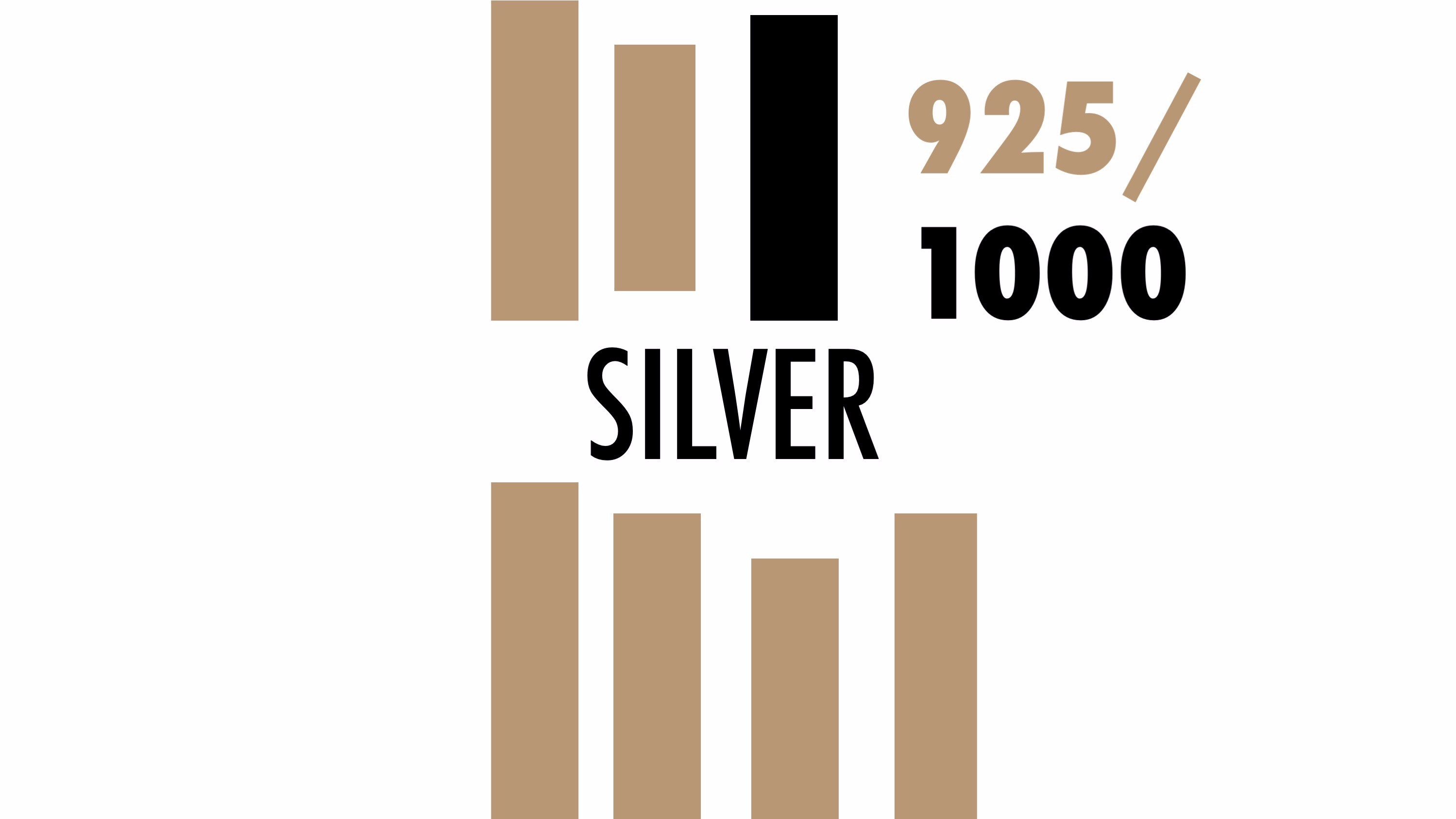 Silver-category-hover-icon
